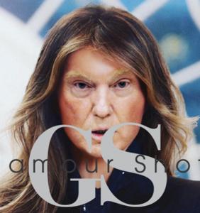 Melania Trump's official White House glamour shot, er, portrait gets memed, hard