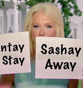 Kellyanne Conway used flash cards during her Sean Hannity interview — and the memes are amazing