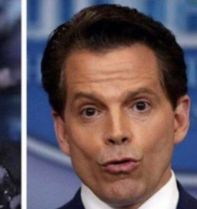 These Anthony 'I don't suck my own c*ck' Scaramucci memes are hilarious
