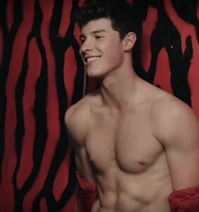 Shawn Mendes was caught stripping backstage, and Twitter's freaking out