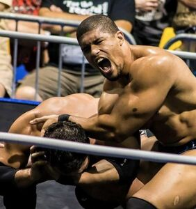 Pro wrestler Anthony Bowens on the trials and travails of being openly bisexual
