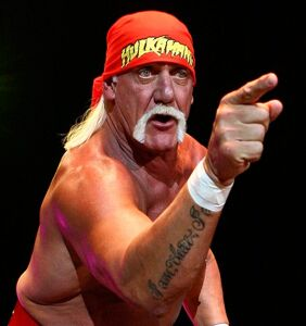 Coming soon: A movie about Hulk Hogan's sex tape