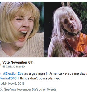 Gay Twitter is ready for tomorrow's midterm elections