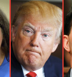 A satisfying meme roundup of the biggest a-holes who lost in this week's midterms