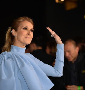WATCH: Celine Dion tackled by security and put in handcuffs