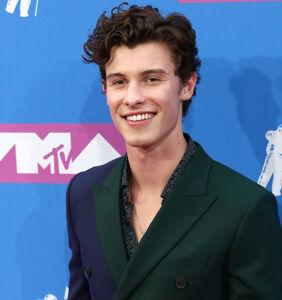 Shawn Mendes addresses gay rumors head-on