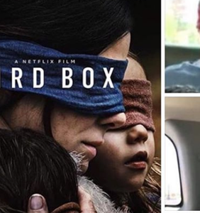 """""""Bird Box"""" has captivated audiences… and inspired some super gay memes"""