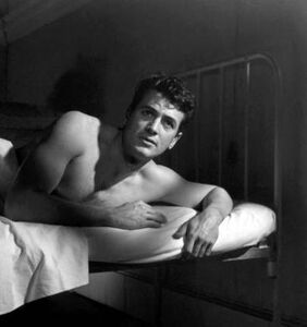 Gay Hollywood icon Rock Hudson's biopic will be directed by another gay Hollywood icon
