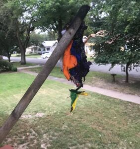 Arsonist sets pride flag on fire outside home of sleeping family