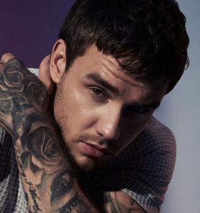 Liam Payne's debut album bombs after accusations of biphobia