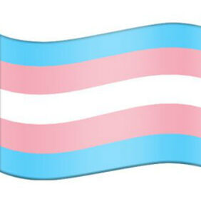 There's finally an official trans flag emoji