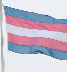 GOP lawmakers want to ban Pride and trans flags on public buildings