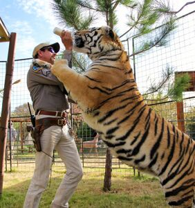 EXCLUSIVE: Co-director Rebecca Chailkin spills on the chaos of 'Tiger King'