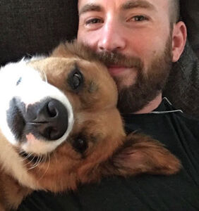 PHOTOS: Chris Evans really wants you to see the tat he dedicated to his dog