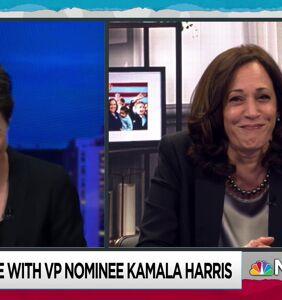 Kamala Harris finally breaks her silence on the fly that landed on Mike Pence's head