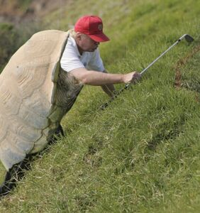 """Anderson Cooper calling Donald Trump an """"obese turtle"""" has been memed for eternity"""