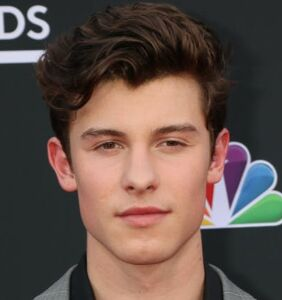 Shawn Mendes dives even deeper into gay rumors