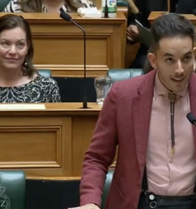 """WATCH: Lawmaker tells parliament """"be gay, do crime"""" in amazing first speech"""