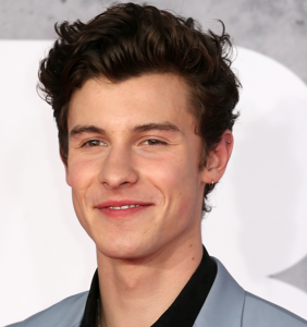 Shawn Mendes talks gay rumors & doesn't mince his words