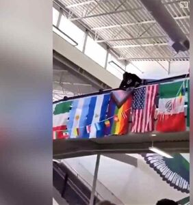 WATCH: High school students cheer as a classmate defiles the pride flag