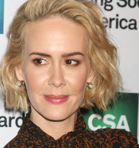 Trans fans are fighting about Sarah Paulson's Twitter. Here's why…