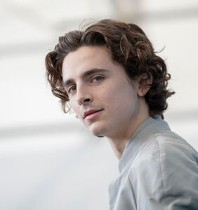 """PHOTOS: Timothée Chalamet tells fans he's been """"playing with himself all day,"""" shares proof"""