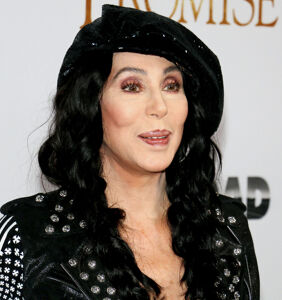 Cher gives the world EXACTLY what it needs in one tweet